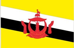 assurance santé internationale Brunei