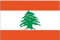assurance santé internationale Liban